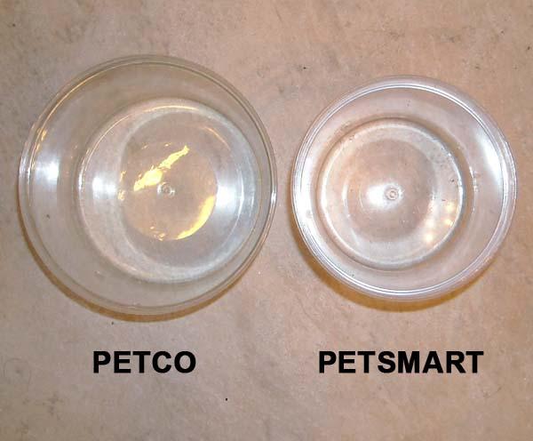 Something disturbing petco vs petsmart page 2 betta for Betta fish petsmart